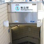 【駒込・巣鴨散策】六義園→旧古河庭園→東京染井温泉SAKURA