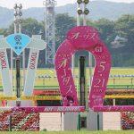 【競馬観戦記】2017年5月21日 東京競馬 〜4角でのソウルスターリング