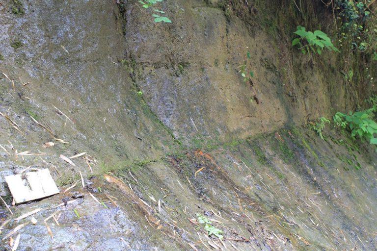 約77万年前の火山灰層