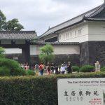 皇居東御苑に行ってきた。